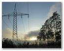 Stromleitung im Wald