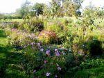 Garten im Luch