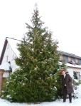 Weihnachtsbaum Mützlitz